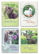 Favorite Friends, Birthday Cards, Box of 12