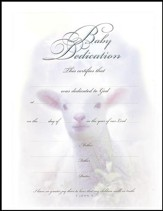 Baby Dedication Certificates, Embossed  (6)