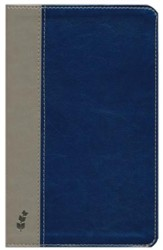 ERV Duotone Bible, Blue/Grey