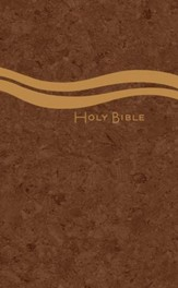 CEB Church Bible, Large Print, Casual Edition Hardback, Cloth over boards