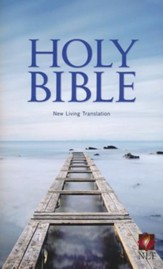 NLT Economy Bible - Paperback  - Slightly Imperfect