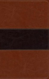 KJV Study Bible, Brown/Tan