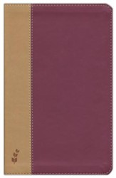 ERV Duotone Bible, Burgundy/Tan