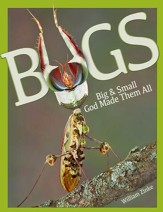 Bugs: Big & Small God Made Them All  - PDF Download [Download]