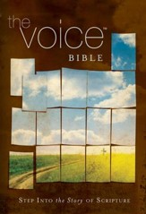 The Voice Bible: Step Into the Story of Scripture - eBook