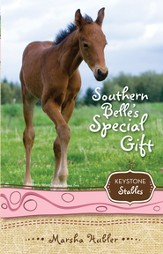 Southern Belle's Special Gift - eBook