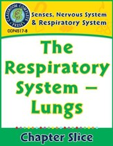 Senses, Nervous & Respiratory Systems: The Respiratory System - Lungs Gr. 5-8 - PDF Download [Download]