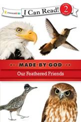 Our Feathered Friends - eBook