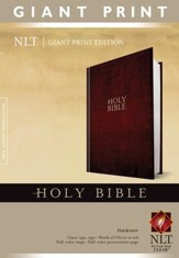Holy Bible, Giant Print NLT, Hardcover - Slightly Imperfect
