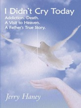 I Didn't Cry Today: Addiction. Death. A Visit to Heaven. A Father's True Story - eBook