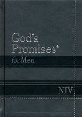 NIV God's Promises for Men