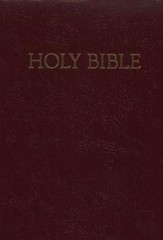 NRSV Children's Bible - Deluxe Gift Edition, Imitation leather, Burgundy - Slightly Imperfect