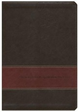 NLT Chronological Life Application Study Bible, Leatherlike Brown/Tan - Slightly Imperfect