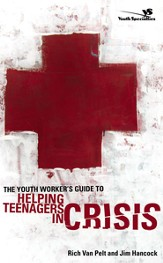 The Youth Worker's Guide to Helping Teenagers in Crisis - eBook