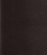 ESV Journaling Bible--buffalo  leather over board, deep brown