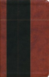 KJV Study Bible--soft leather-look, chocolate/brown (indexed)
