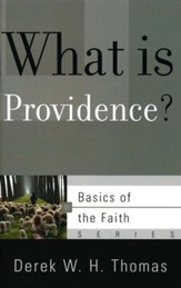 What Is Providence? (Basics of the Faith)