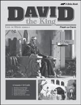 Extra David the King Lesson Guide