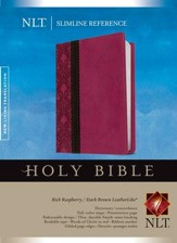 NLT Slimline Reference Bible, soft imitation leather, rich raspberry/dark brown - Slightly Imperfect