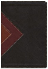 NLT Illustrated Study Bible--soft leather-look, brown/tan - Slightly Imperfect