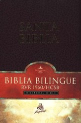 Biblia Bilingue RVR 1960/HCSB, Piel Imit., Rojizo  (RVR 1960/HCSB Bilingual Bible, Imit. Leather, Burgundy)