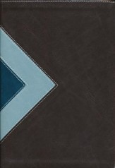NLT Illustrated Study Bible--soft leather-look, teal/chocolate (indexed)