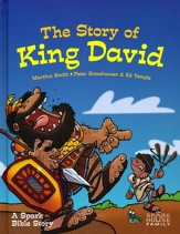 The Story of King David: A Spark Bible Story