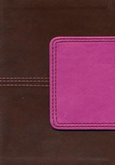 HCSB Large Print Compact Bible, Brown and Pink LeatherTouch with Magnetic Flap