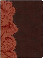 KJV Study Bible--soft leather-look, dark umber/sienna (indexed)
