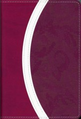 NIV Thinline Bible, Compact, Italian Duo-Tone,   Razzleberry/Plum