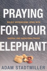 Praying for Your Elephant: Boldly Approaching Jesus with Radical and Audacious Prayers