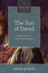Bible studies curriculum download 2 samuel christianbook the son of david a 10 week bible study seeing jesus in ebook fandeluxe Ebook collections
