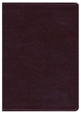 NLT Life Application Study Bible, Large Print Brown Leatherlike - Slightly Imperfect