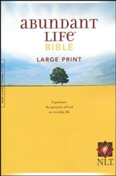 NLT Abundant Life Bible, Large Print  - Slightly Imperfect