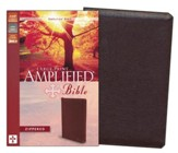 Amplified Zippered Collection Bible, Large Print, Burgundy