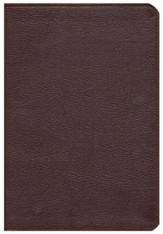 NIV Thinline Zippered Collection Bible, Large Print, Burgundy
