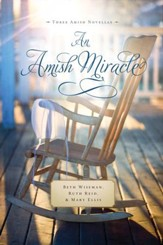An Amish Miracle - eBook