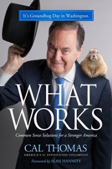 What Works: Common Sense Solutions for a Stronger America - eBook