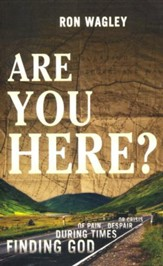 Are You Here? Finding God During Times of Pain, Despair or Crisis