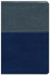 NKJV Evangelism Study Bible - Imitation Leather Gray/Blue