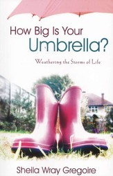 How Big is Your Umbrella?: Weathering the Storms of Life - Slightly Imperfect
