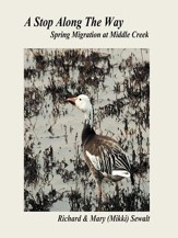 A Stop Along The Way: Spring Migration at Middle Creek - eBook
