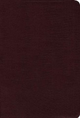 NIV Zondervan Study Bible--bonded leather, burgundy (indexed) - Slightly Imperfect