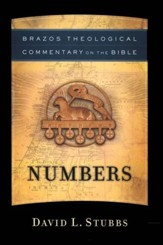 Numbers (Brazos Theological Commentary)  - Slightly Imperfect