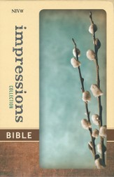NIV Impressions Collection Bible, Hardcover, Padded, Gray Willow