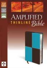 Amplified Thinline Bible, Italian Duo-Tone, Turquoise/Chocolate