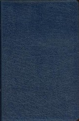 NIV Thinline Bible, Navy