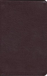 NIV Thinline Bible, Burgundy, Indexed  - Slightly Imperfect