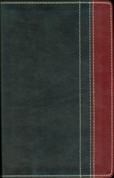 NIV Thinline Bible, Duo-Tone, Charcoal/Rich Red  - Imperfectly Imprinted Bibles