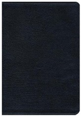 NIV Thinline Large-Print Bible--bonded leather, navy - Slightly Imperfect